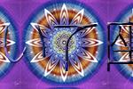 恒星占星術|365日誕生日占い.net[無料占い]いて座