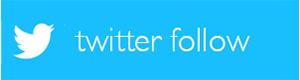 twitter-follow-300-80