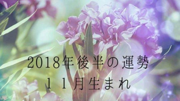 2018年後半の運勢11月生まれ 恒星占星術|365日誕生日占い.net[無料占い