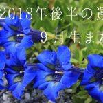 2018年後半の運勢9月生まれ 恒星占星術|365日誕生日占い.net[無料占い