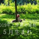 2019年上半期の運勢 5月恒星占星術|365日誕生日占い.net[無料占い]